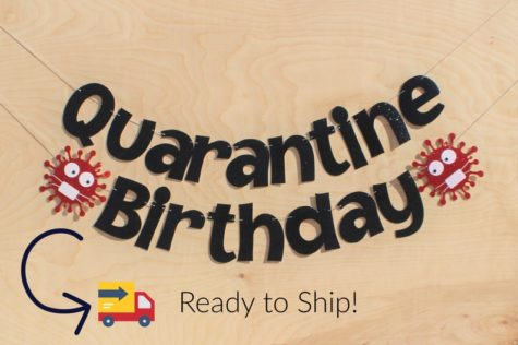 quarantine birthday party banner